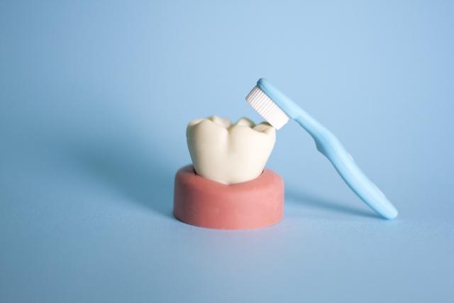 歯磨き シート